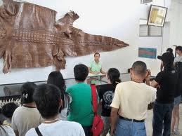 Irawan Crocodile Farm