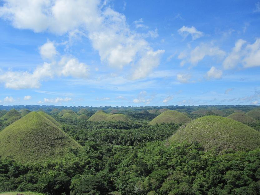 Wonder of Bohol in the Philippines