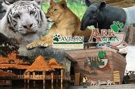 Avilon Zoo Luzon Philippines