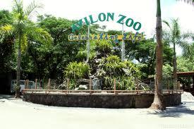 Avilon Zoo Philippines