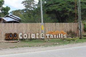 zoocolate thrills bohol
